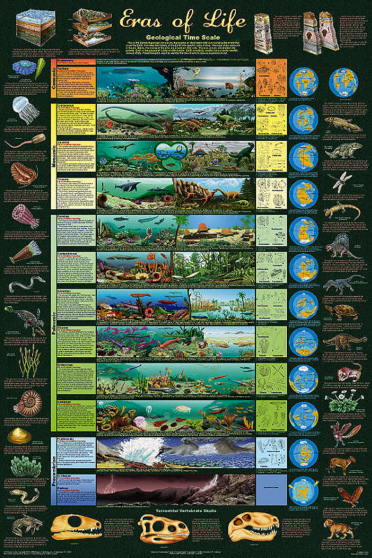 geological time scale activity. jul evolved over the scale