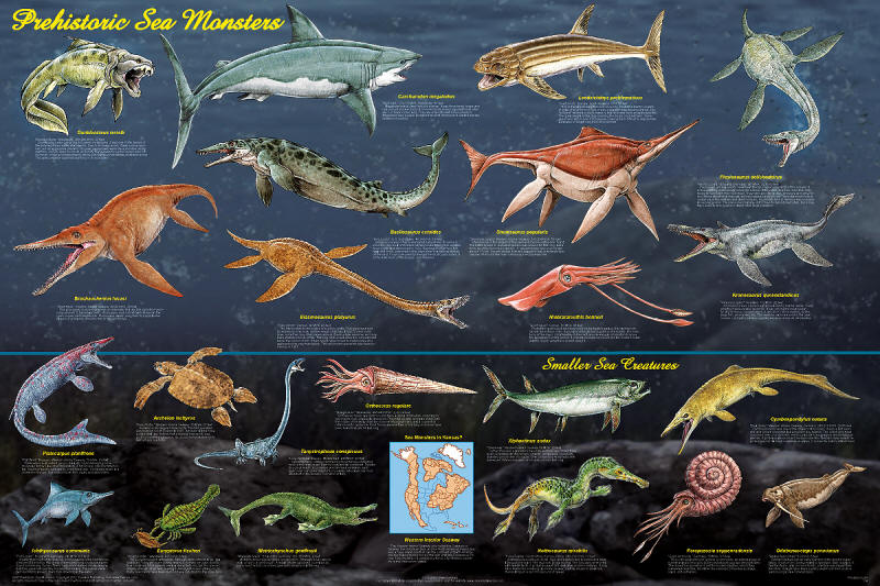Biggest Animals In The World Chart