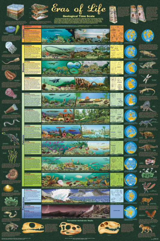 life and geologic time. Geologic time scale for the